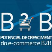 O potencial de crescimento do e-commerce B2B